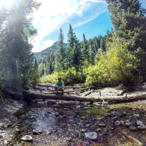 Big Cottonwood